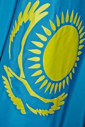 Флаги (государственные,  городов,  областей,  организаций,  прочие)