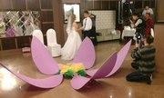 Организация торжеств. Свадьба