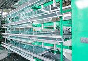Продаём клетки для кур несушек из Китая
