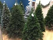 Премиум елки