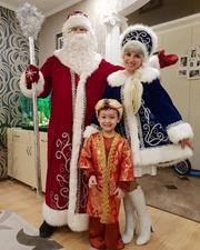 Дед мороз и снегурочка на дом!